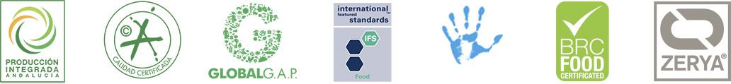Logos Certificado
