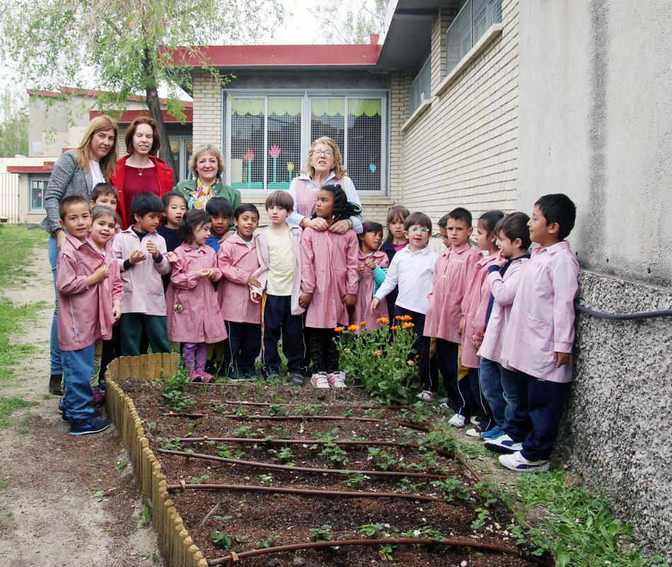 fresas de Cuna de Platero en el huerto escolar colegio Pinar del Rey