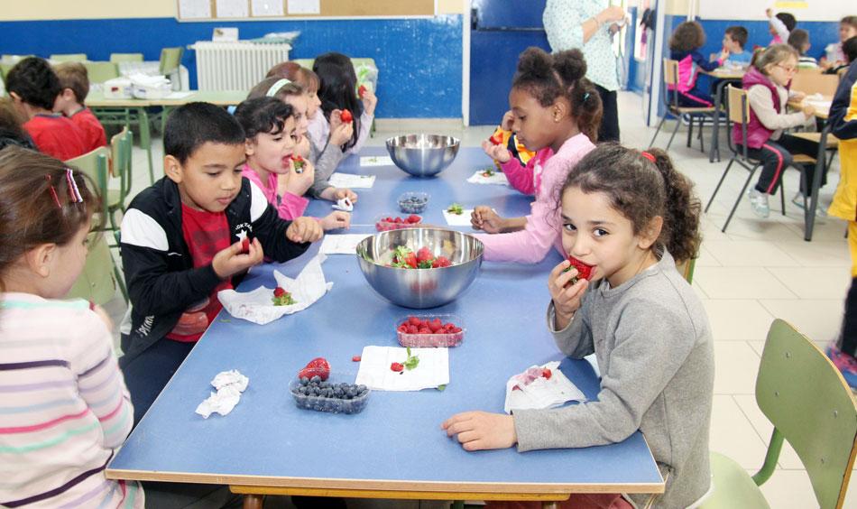 Cuna de Platero apoya la educacion alimentaria y medioambiental