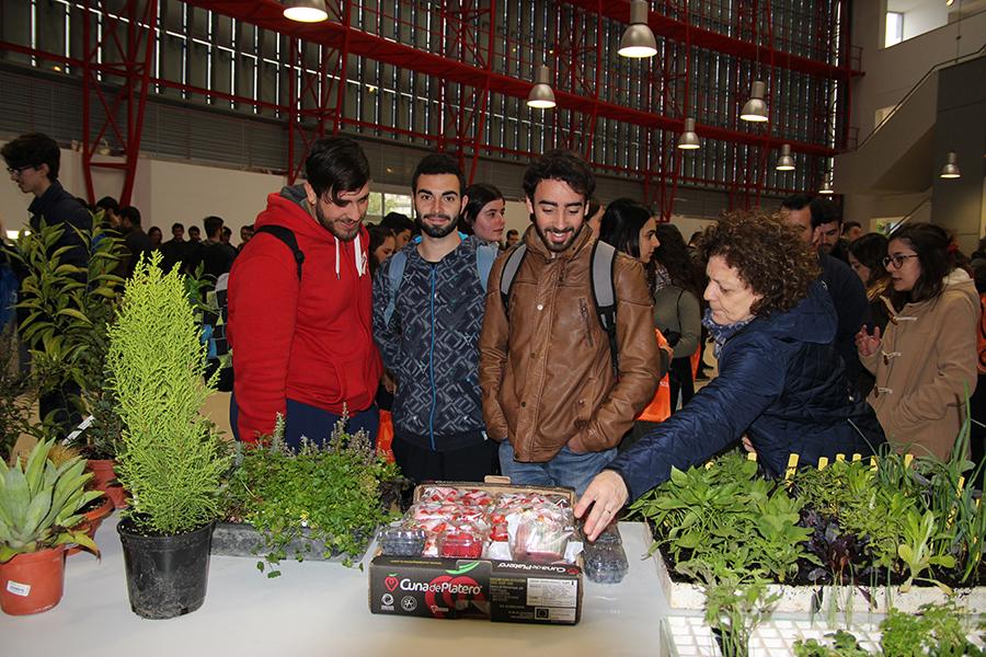 Cuna de Platero acerca sus berries a futuros estudiantes de Ingeniería Técnica Agrícola de la UHU