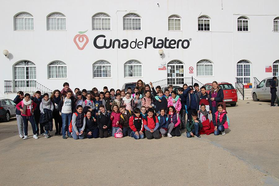 Cuna de Platero fomenta el conocimiento de las fresas a los alumnos del colegio Santo Ángel de Huelva