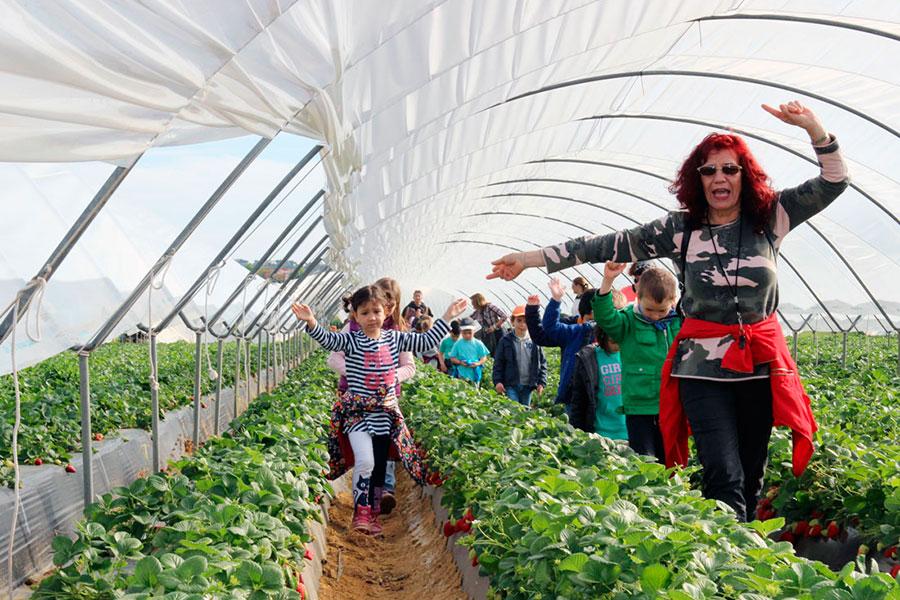 Cuna de Platero apoya con una visita a sus instalaciones el programa de Educación Alimentaria del colegio El Puntal de Aljaraque
