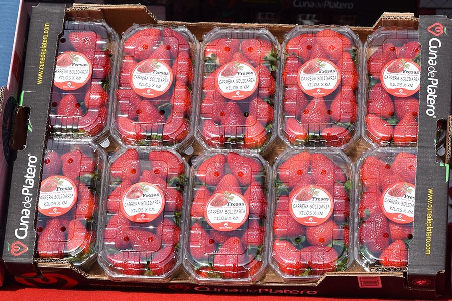 """Las fresas de Cuna de Platero, para el disfrute de los niños que participan en la carrera solidaria """"Kilos x Km"""""""