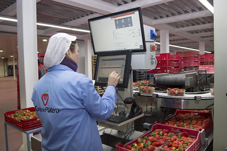 Cuna de Platero moderniza y digitaliza todos los procesos implantados en la cooperativa