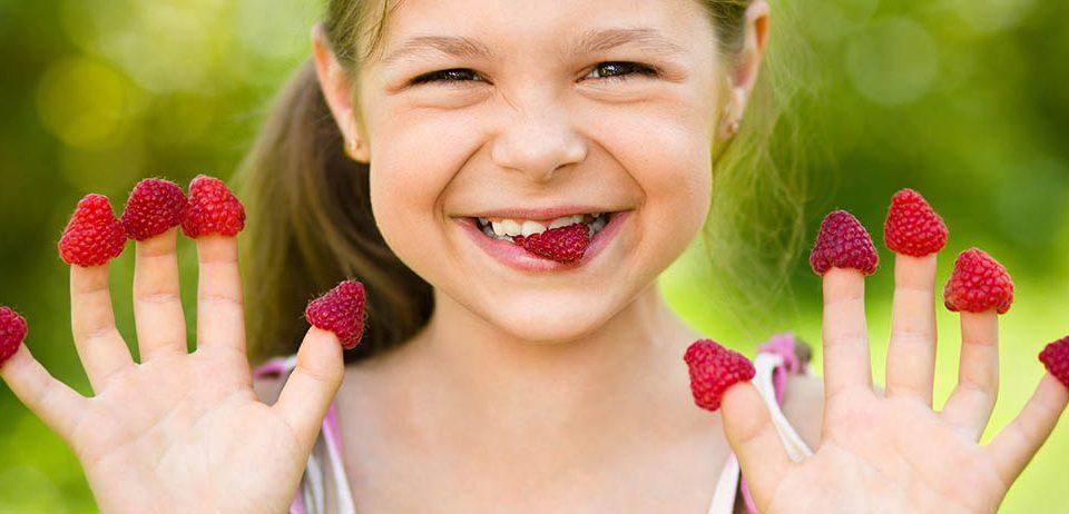 """La salud que aportan los """"berries"""""""